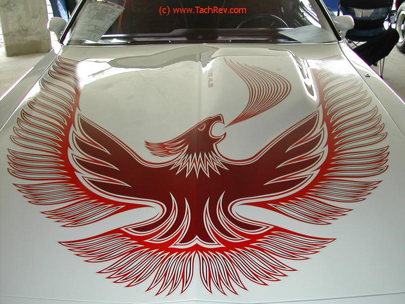Mike Leggio's 1981 Turbo T/A