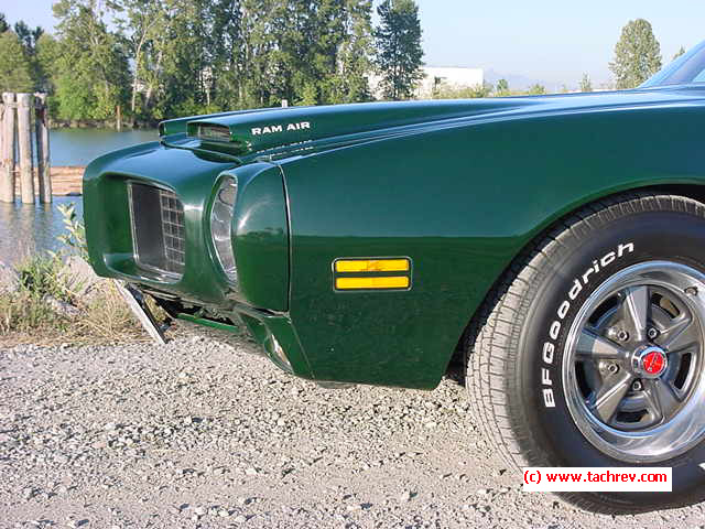 Nose of a different color - Brewster Green Formula Firebird